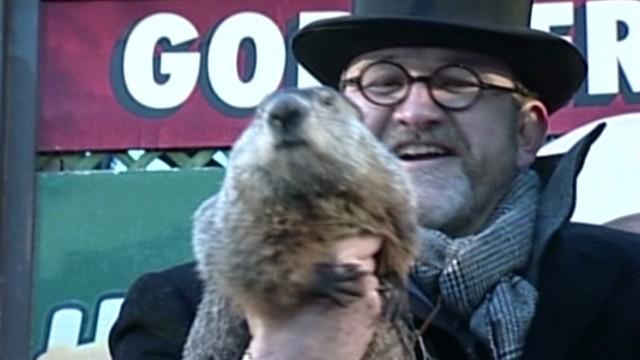 La marmota Phil acusada de mentir porque el invierno sigue