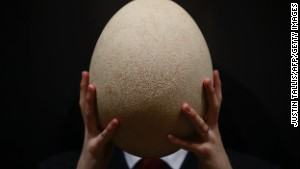 Unconfirmed: The elephant bird egg is about the same size as John Madden\'s head.