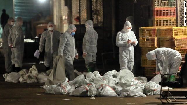 Más de 20.000 aves sacrificadas en Shanghai por el virus H7N9