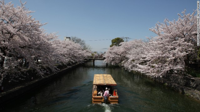 Tourists travel on a ferry near blooming cherry blossoms on the Okazaki Canal in Kyoto, Japan, on April 5.
