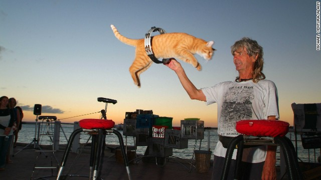 <a href='http://www.catmankeywest.com/' target='_blank'>Dominique LeFort</a> and his troupe of trained house cats entertain regularly at a nightly arts festival in Key West, Florida.