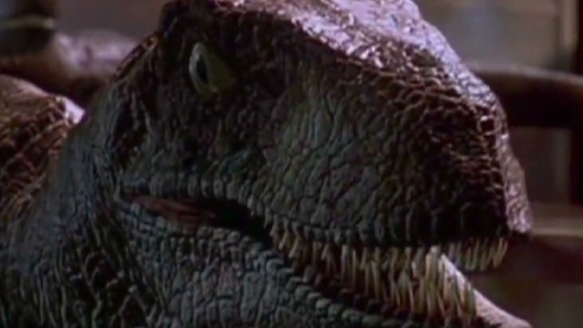 Tortoise mating in 'Jurassic Park'? You don't say ...