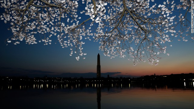 Cherry blossoms bloom in Washington on Monday, April 8. A colder-than-normal March and chilly April delayed the beginning of the cherry blossom season. Peak bloom was originally predicted between March 26 and March 30. 