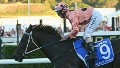 25/25 for unbeaten Black Caviar