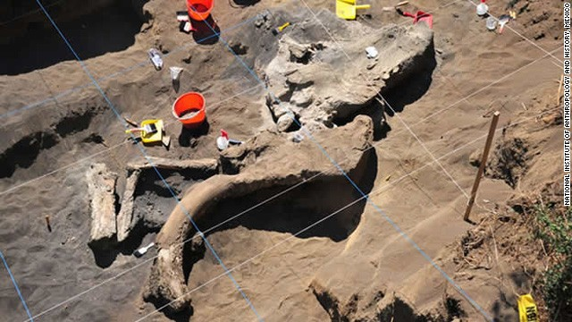 Mammoth remains discovered in Mexico