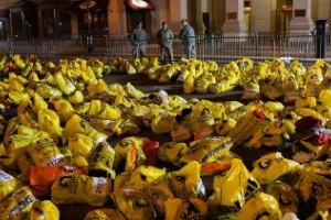 Boston: Las secuelas del terror