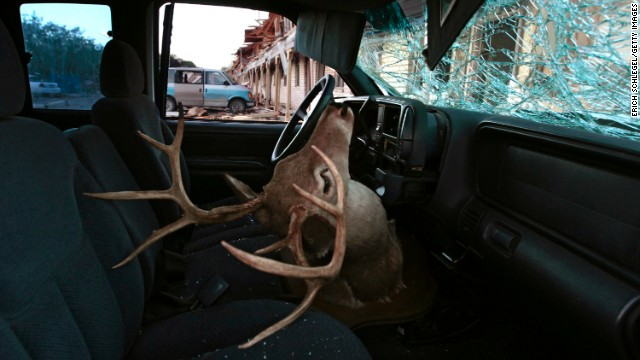 A deer head mount sits inside a car parked next to a apartment complex damaged in the explosion.