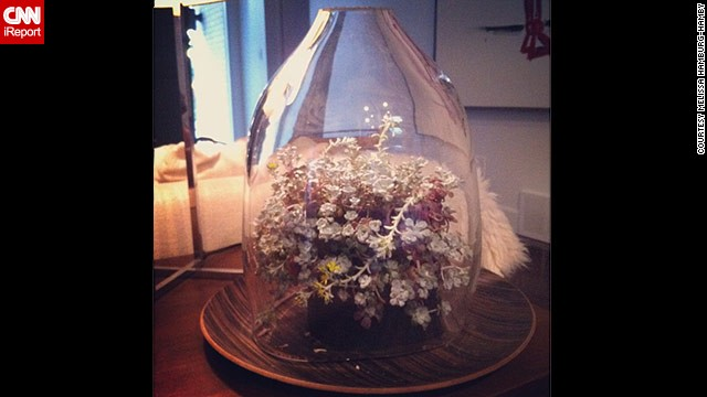 Hamburg-Hamby says a friend made this <a href='http://ireport.cnn.com/docs/DOC-959993'>bell jar display</a> for her.