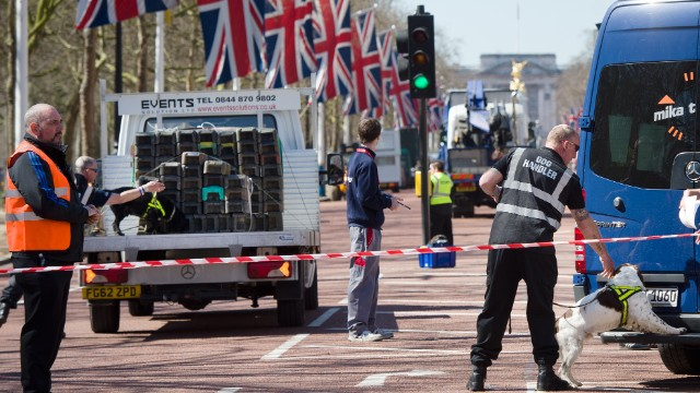 A handler works with an explosive-detecting dog on The Mall in central London on April 20, 2013, on the eve of the London Marathon. A beefed-up police presence for the London Marathon on April 21 will remain in place despite the death and capture of the Boston Marathon bombing suspects, Scotland Yard said.