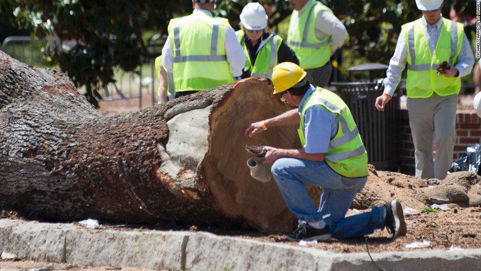 Crews remove pieces of live oaks on Tuesday, April 23, at Toomer's Corner in Auburn, Alabama. Auburn University spent two years trying to save the trees that a fan of rival Alabama poisoned in 2010. Auburn fans would roll the iconic oaks with toilet paper after big victories, and they did so for the last time on Saturday.