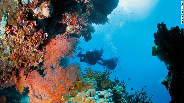 The Great Barrier Reef is composed of more than 3,000 individual reefs interspersed with more than 600 islands.