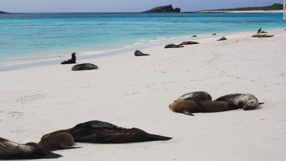 Islas Galápagos, Ecuador