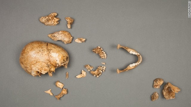 Cannibalism evidence in historic Jamestown