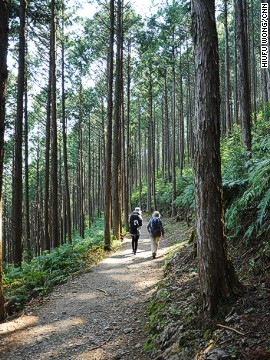 The journey between Hosshinmon-oji and Kumano Hongu Taisha is considered to be the top short walk on the Wakayama prefecture pilgrimage.