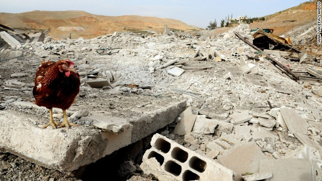 A chicken stands in the rubble of a building after an apparent airstrike in the Al-Hama area of Damascus on May 5.