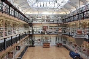 Museo de Patología de Bart, Gran Bretaña
