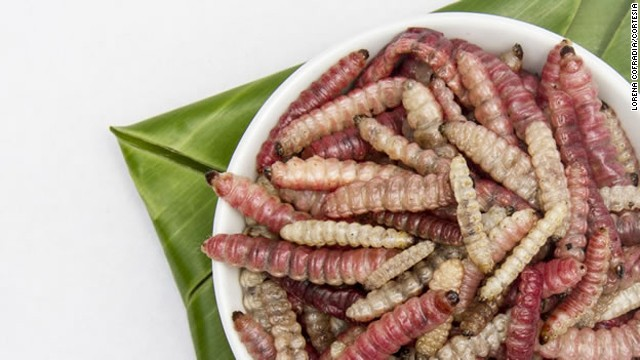 Mexico's insects may hold the key to battling hunger