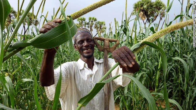 A farmer poses in his millet field near the village of Simiri, Niger, on January 27, 2011.