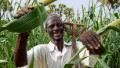 Land rights help Africa feed itself