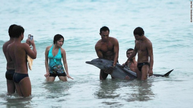 Chinese netizens are outraged as photos surface of tourists posing with a dying dolphin in Hainan.