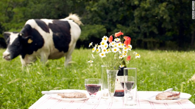 Pick the right wine for your picnic