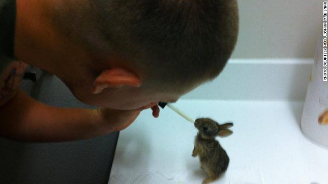 Joshua Bisnar says he rescued four orphaned rabbits while stationed at Camp Pendleton in Oceanside, California.
