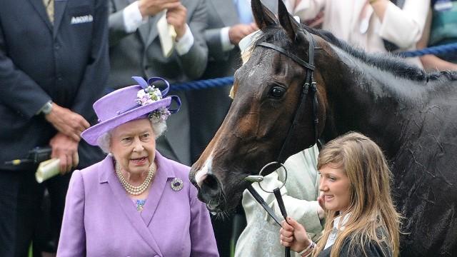 ¡Oops! Una yegua de la reina Isabel II da positivo en un control antidopaje