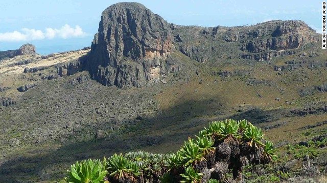 Rising along the Ugandan-Kenyan border, Mount Elgon is an extinct volcano ideal for extended hikes and bird watching. The best times to come here are from June to August and December to March. <i>Peak: 4,321 meters.</i>