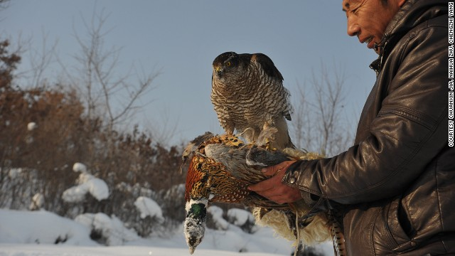 Once a form of entertainment for royals, raising falcons is considered by China's Manchu people to be a show of bravery and man's conquest over nature.