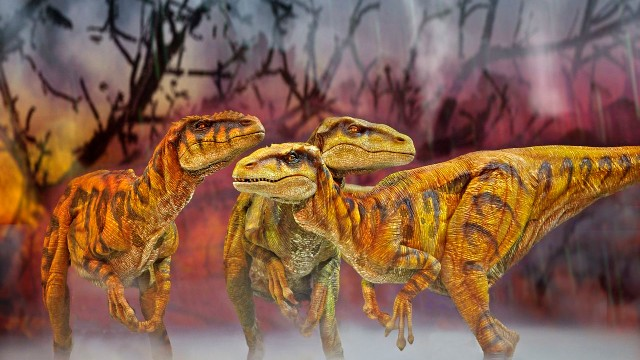 The show included 20 life-size dinosaurs.