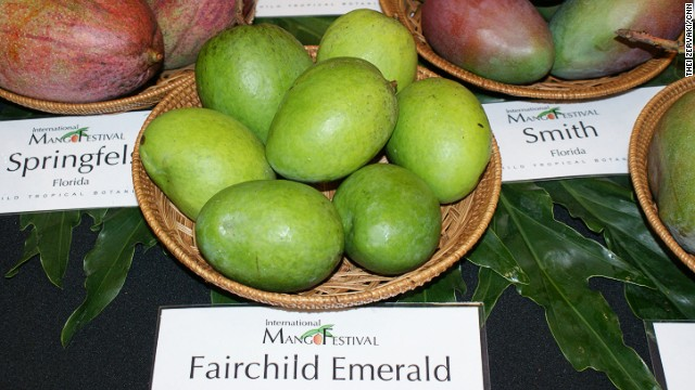 Fairchild mangoes were named after David Fairchild, who introduced mangoes into the United States from India in the early 1900s. After much deliberation, our writer decided they were her favorite variety.