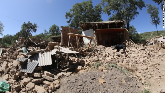 A dog stands on the ruins of a collapsed house in Hetuo township in Dingxi on July 22.