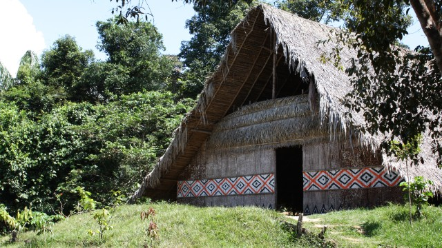 A hut belonging to indigenous tribe along the Rio Negro river.