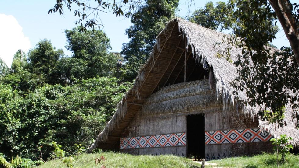 Vida amazónica