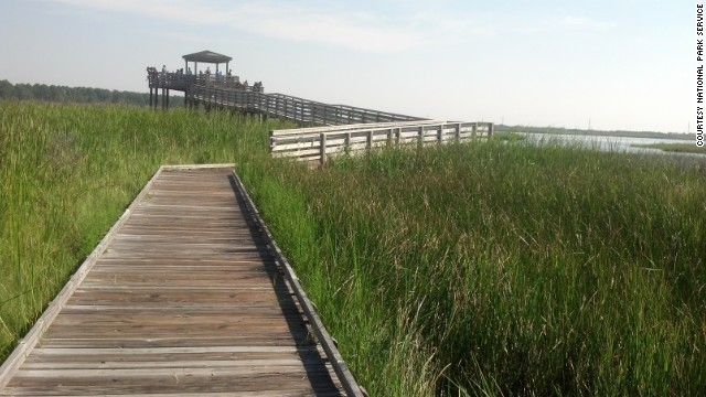 The boardwalk near Bodie Island Lighthouse is Gamman's favorite place to view wildlife.