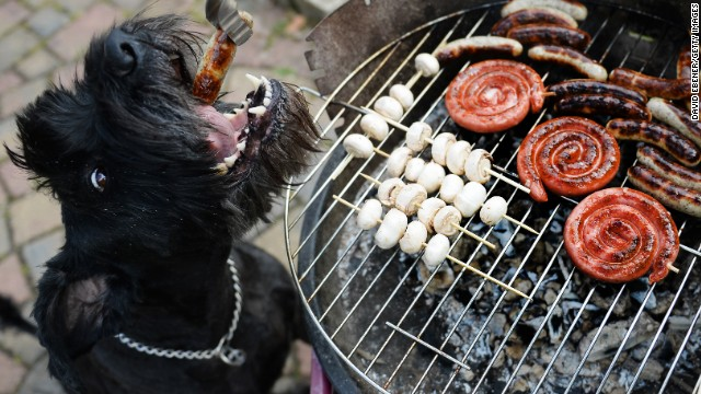 Aside from the obvious danger of serious burns, cookouts can be treacherous for your dog. Eating foods they don't normally eat -- greasy burgers and BBQ sauce -- can wreak havoc on their digestive systems.