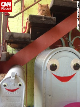 Megan Smutak snapped a pic of these smiling mailboxes outside an artist's gallery in Cuyahoga Falls, Ohio.