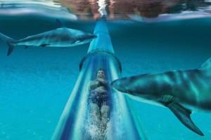 Parque Acuático Aquaventure (Dubai, EAU)