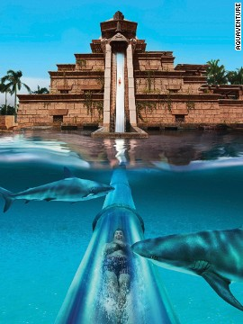 Aquaventure's Leap of Faith ride passes through a shark-filled aquarium. Visitors can swim in a manmade lagoon filled with marine animals.