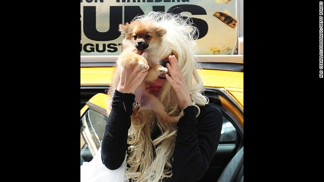 Bynes uses her dog to block her face from photographers while shopping in Chelsea on July 10 in New York City.