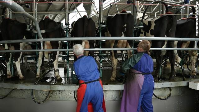 China detiene importación de leche en polvo neozelandesa por bacteria del botulismo
