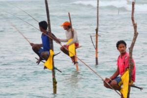 Playa Polhena, Sri Lanka