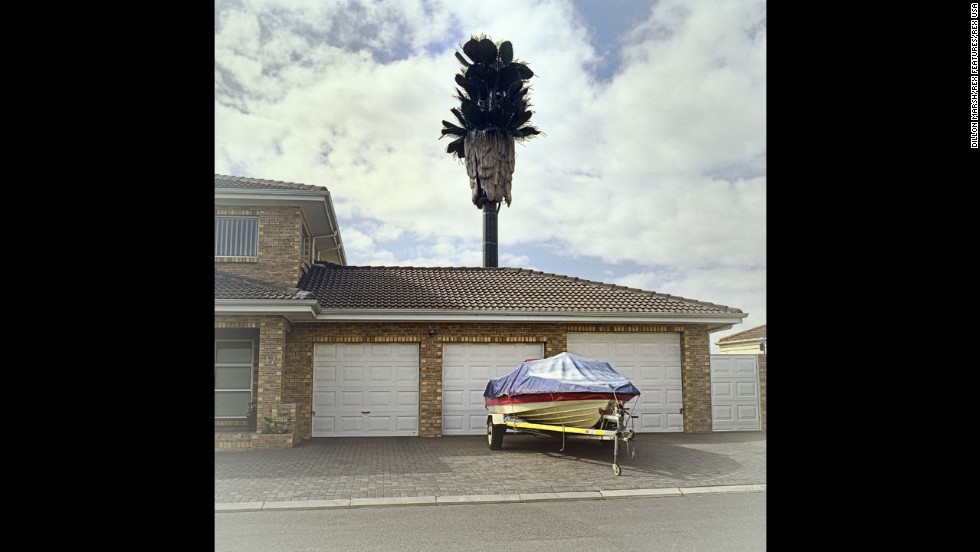 "South African photographer Dillon Marsh traveled around Cape Town searching for trees with an ulterior motive. Cell phone towers disguised as trees have popped up all around South Africa. Marsh <a href='http://www.dillonmarsh.com/invasivespecies.html' target='_blank'>states on his website</a> that his project ""Invasive Species"" looks at these covert towers and their surroundings in Cape Town. Above, a tower looms over the suburb Brackenfell South."