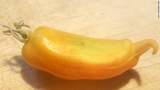 "This'd be a ""cream sausage"" heirloom tomato from our managing editor's garden. And it's happy to see you."