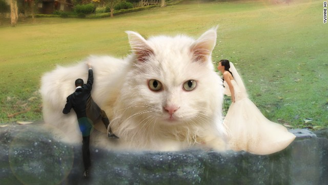 Wancy Wong had hoped to include her pet, Ah B, in her engagement photos but unfortunately it died before the shoot. Wedding planner Yvonne Ho convinced Wong that she could still use old images of the cat, photoshopped to include the happy couple.