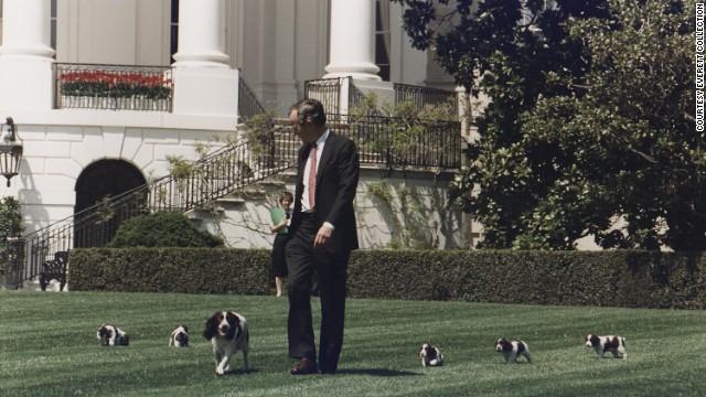 The Bush dog joke you never heard
