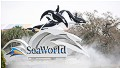 SeaWorld claims bias
