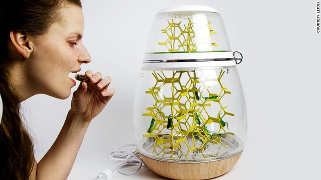 The LEPSIS tabletop grasshopper colony is designed to take the mess out of rearing and harvesting insects for human consumption