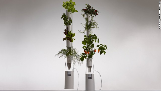 If grasshoppers are not to your taste, you can grow herbs instead with a Windowfarm. The elegant plant holder contains hydroponic gel instead of soil