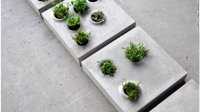 Grey to Green is a simple, low-tech way to break up the monotony of the urban landscape. Paving stones studded with hardy plants bring some greenery to the concrete jungle.